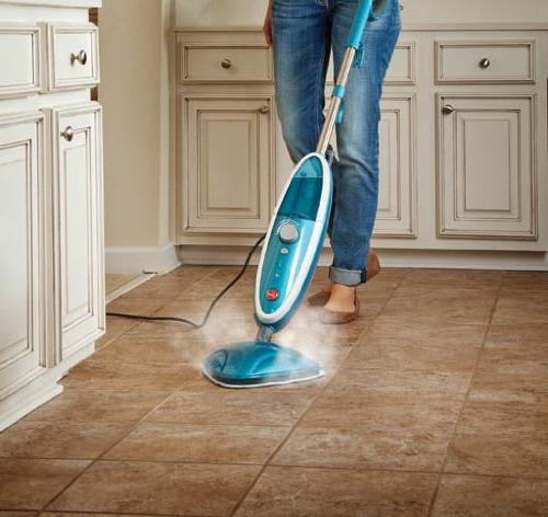 Hoover Steam WH20200